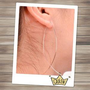 Silver Fish Hoop Earrings